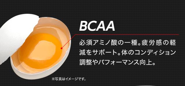 BCAA 必須アミノ酸の一種。疲労感の軽減をサポート。体のコンディション調整やパフォーマンス向上。