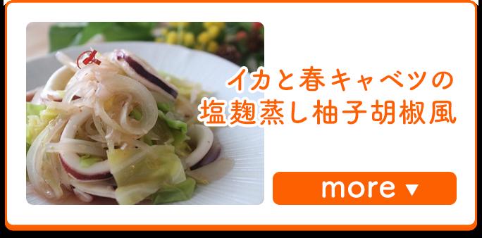 イカと春キャベツの塩麹蒸し柚子胡椒風