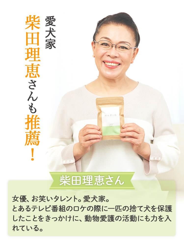 柴田理恵さんも推薦!愛犬家 柴田理恵さん女優、お笑いタレント。愛犬家。とあるテレビ番組のロケの際に一匹のて犬を保護したことをきっかけに、動物愛護の活動にも力を入れている。
