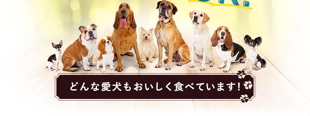 どんな愛犬もおいしく食べています!