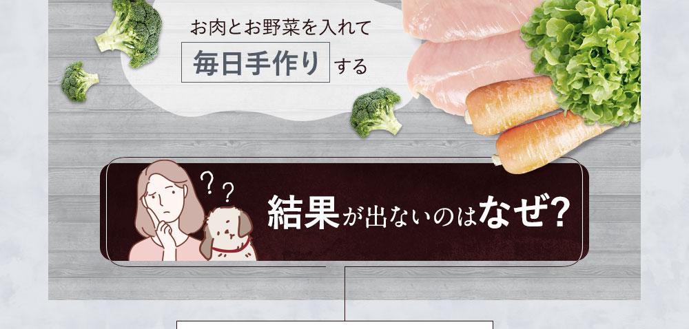 お肉とお野菜を入れて毎日手作り する