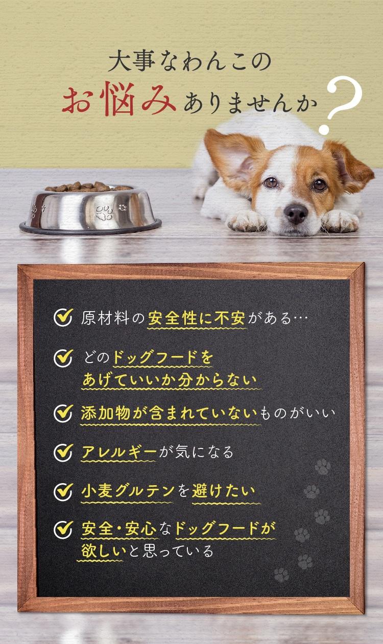 どんなドッグフードを選んだらいいか分からないと迷っていませんか