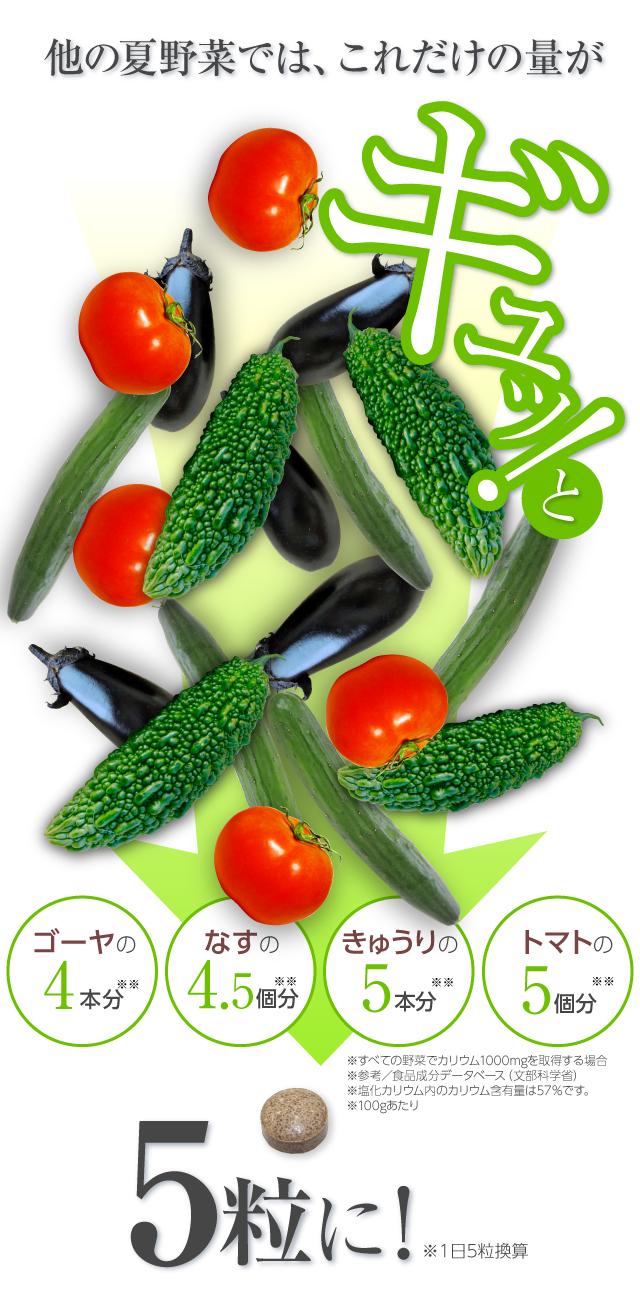 他の夏野菜だとこれだけの量が