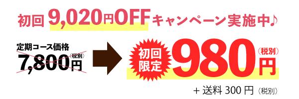 初回25%OFFキャンペーン実施中♪定期コース通常価格7,800円(税別)→5,800円(税別)送料無料