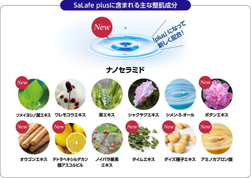 SaLafe plusに含まれる主な整肌成分