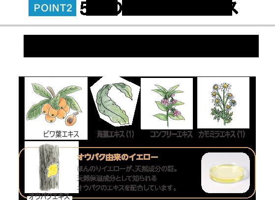 POINT2 5つの天然植物エキス 育毛剤にも使われる海藻エキス(フコイダン含有)を中心に、うるおい成分天然植物エキスを配合しています。 ビワ葉エキス 海藻エキス(1) コンフリーエキス カモミラエキス(1) オウバクエキス オウバク由来のイエロー ほんのりイエローが、天然成分の証。天然保湿成分として知られるオウバクのエキスを配合しています。