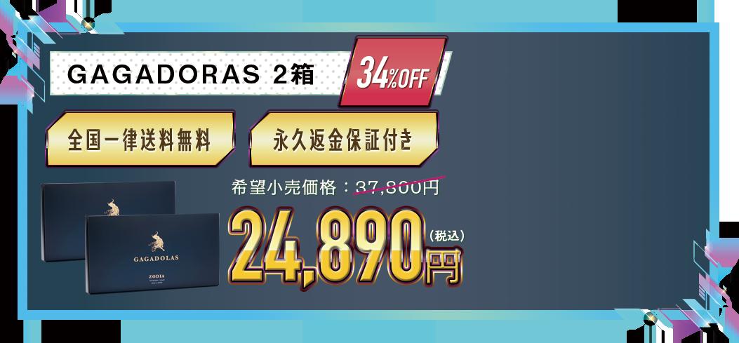 ガガドラス2箱23,920円