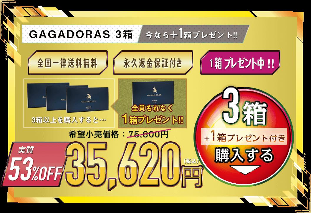ガガドラス3箱+1箱プレゼント34,220円